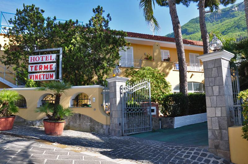 Piscina Hotel Vinetum